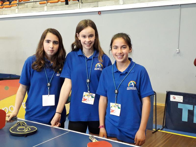 Equipa regionais tenis de mesa